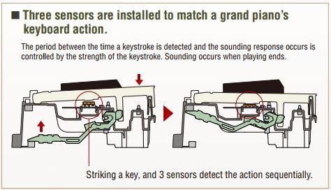 tri_sensor.JPG